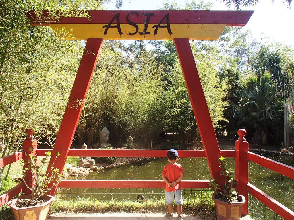 zoo de lagos jardim asiático