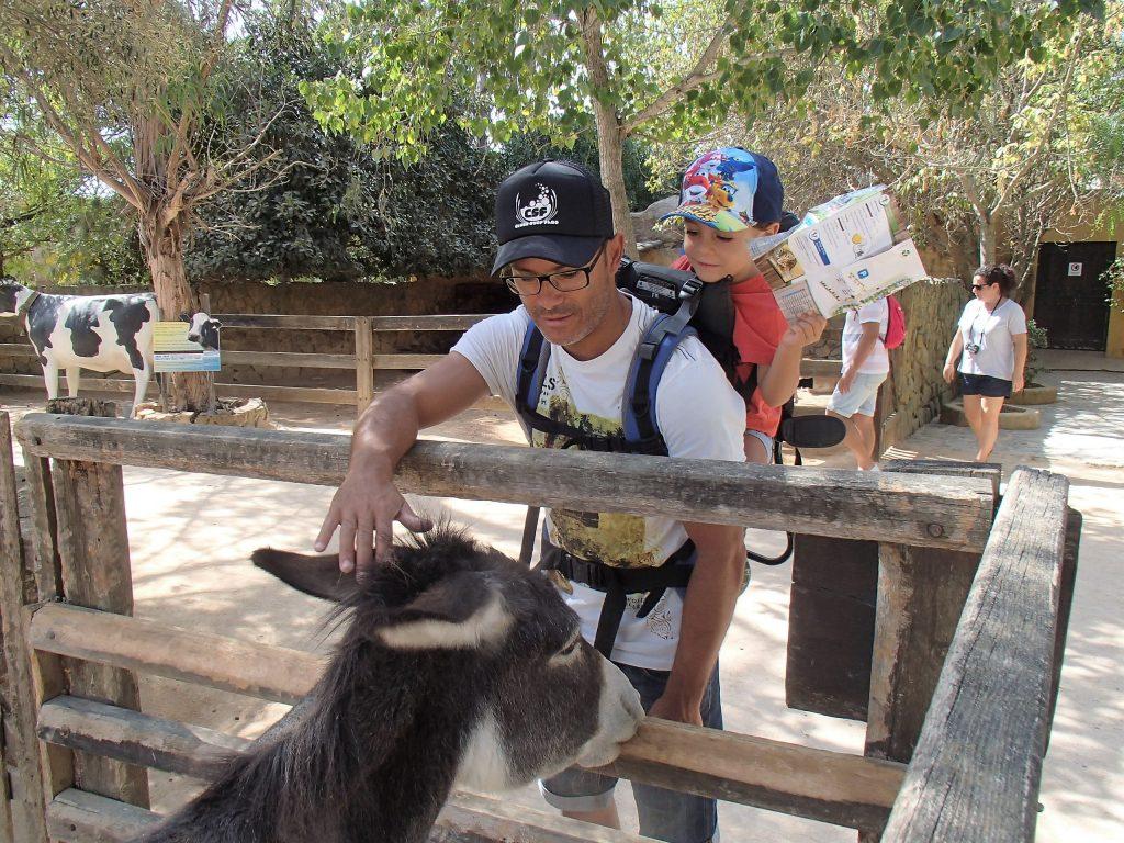 zoo de lagos quinta